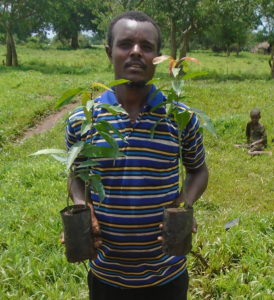 En etiopisk mann holder to små mangotrær som han skal plante
